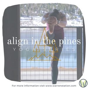 yoga instructor Erin practices standing head to knee pose for Align in the Pines