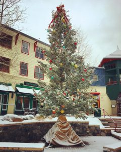 Lit up holiday tree in River Run Village