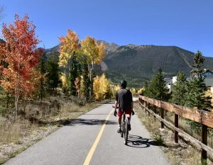 A biker sits upright with hands off the handlebars while biking past red and orange aspen trees